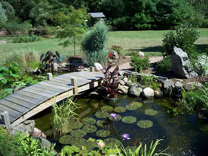 garden-pond-bridge-2
